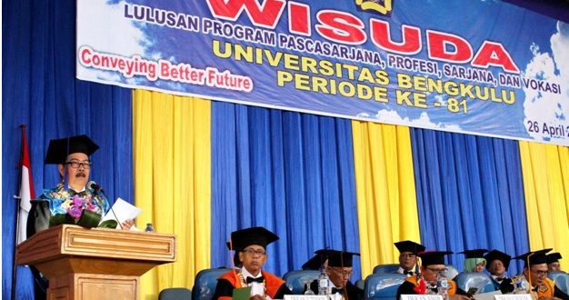 Rektor : Rationality in the Higher Education